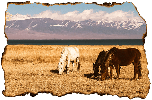 Wildlife tour 2 Kyrgyzstan tours